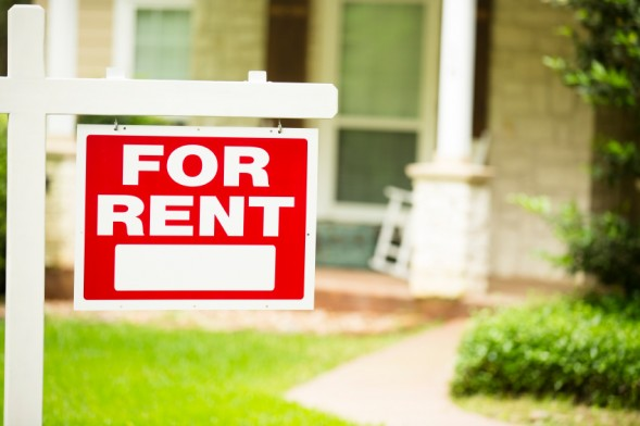 find more renters
